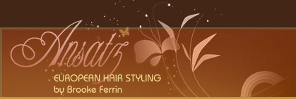 Ansatz : European Hair Styling by Brooke Ferrin